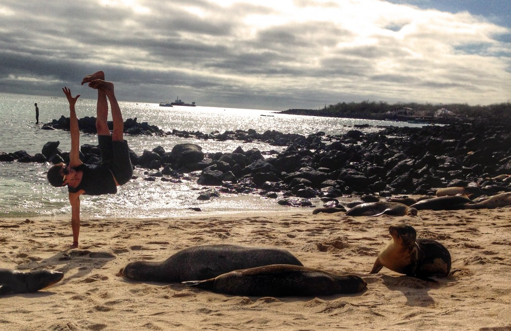 Playa Mann Beach – Galapagos, Ecuador (Jul 2014). Shot by: Random stranger