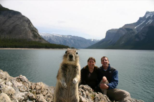 Photobomb_squirrel