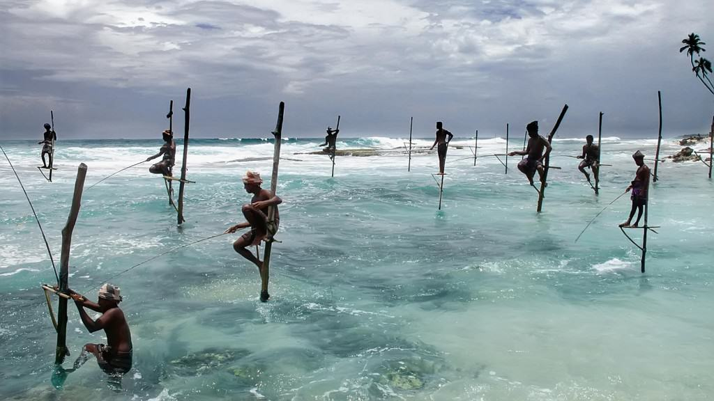 Sri Lanka - Stilt Fishing