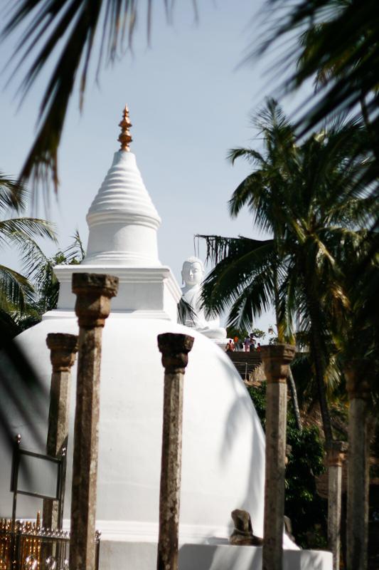 Sri Lanka_8
