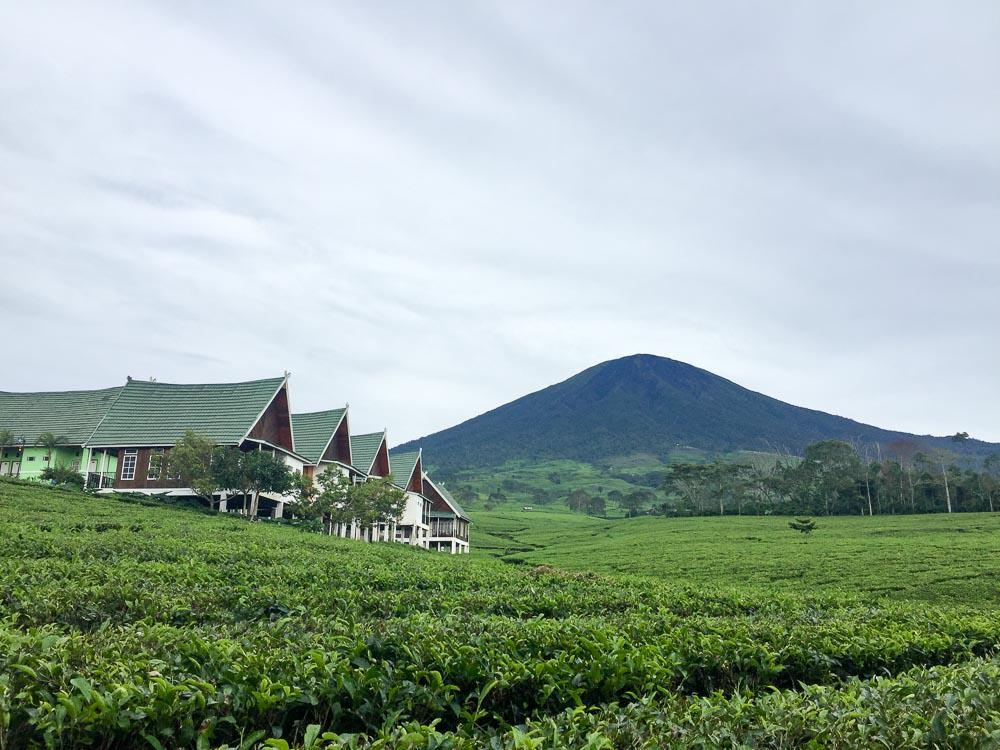 Pagar Alam South Sumatra Villa Hotel Wisata Gunung Gare