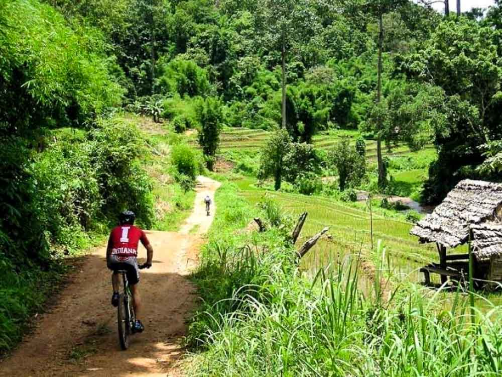 Mountain Biking in chiang mai - chiang-mai-guide