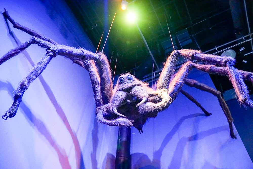 Aragog Model - Harry Potter London Studio