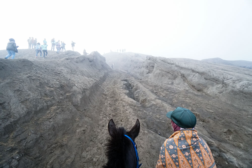 Taking a Pony Up Mount Bromo