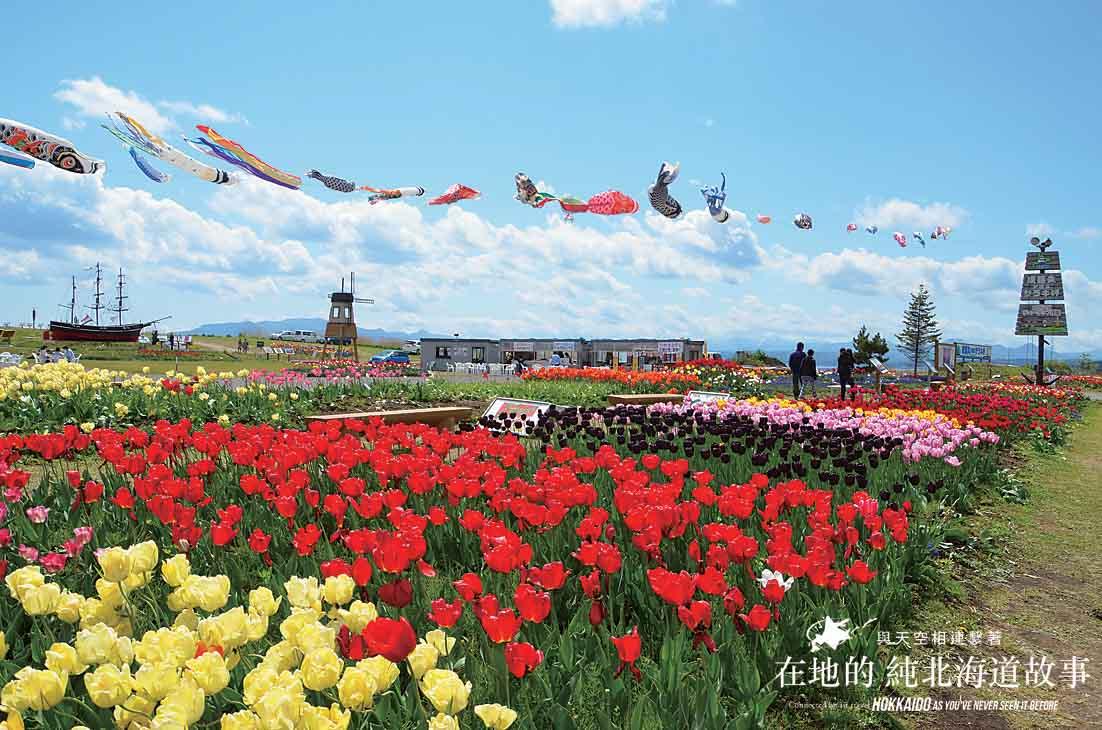 Hokkaido - KIKONAI sta. area
